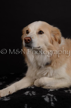 M&N Photography -DSC_5697