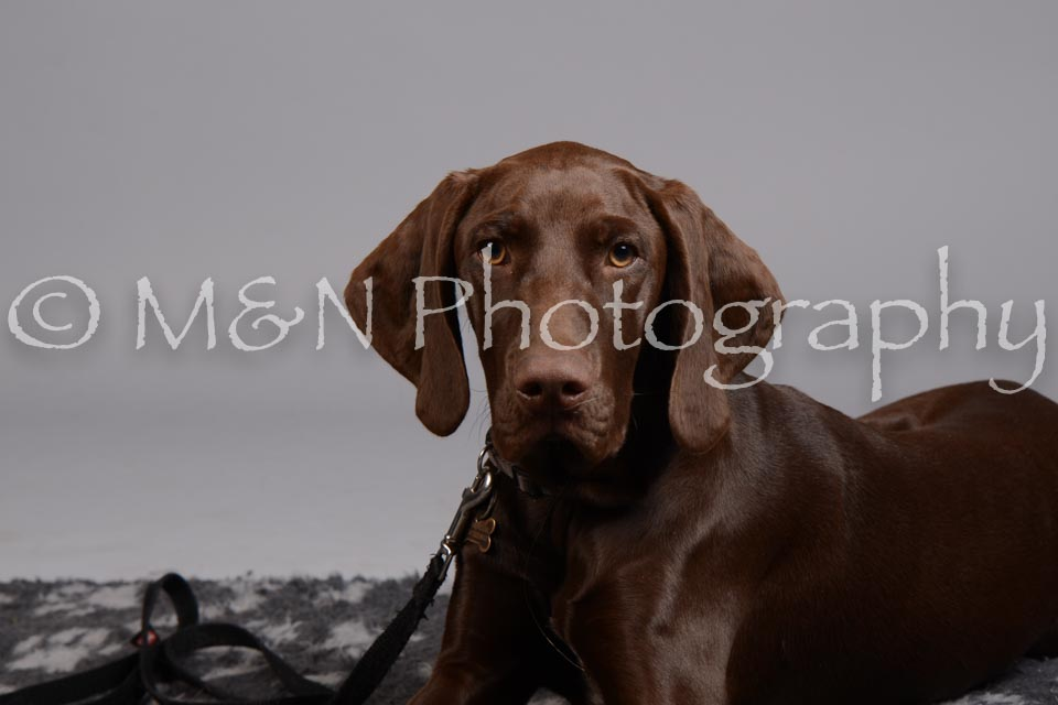 M&N Photography -DSC_2603