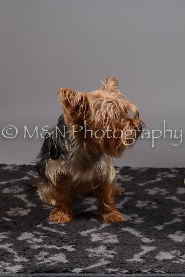 M&N Photography -DSC_2621