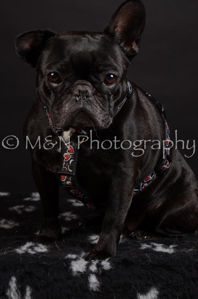 M&N Photography -DSC_5663