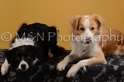 M&N Photography -DSC_4494