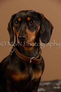 M&N Photography -_SNB0537