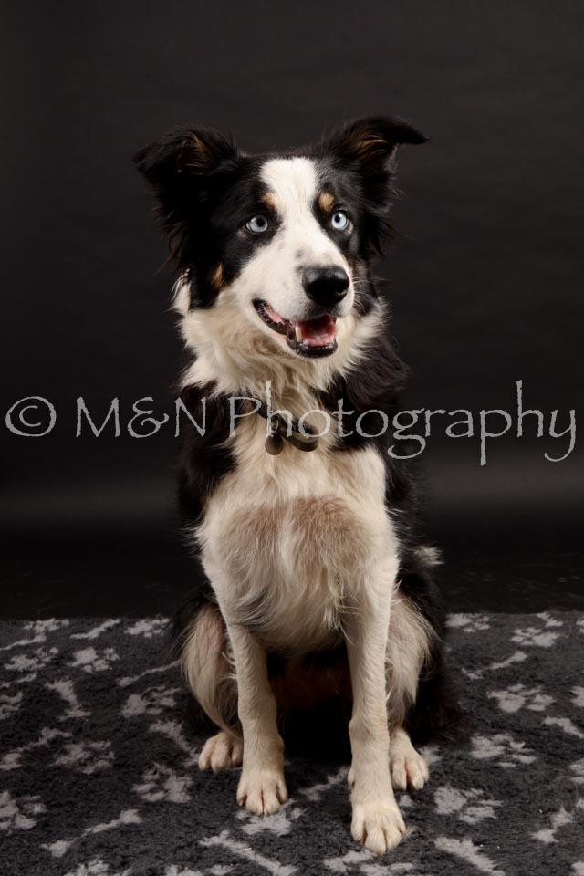 M&N Photography -DSC_9948