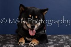 M&N Photography -DSC_4236