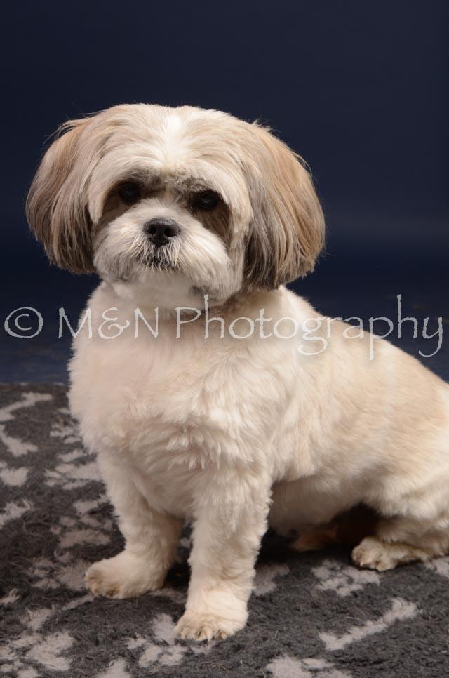 M&N Photography -DSC_0725