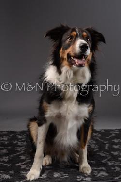 M&N Photography -DSC_2061