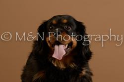 M&N Photography -_SNB0670