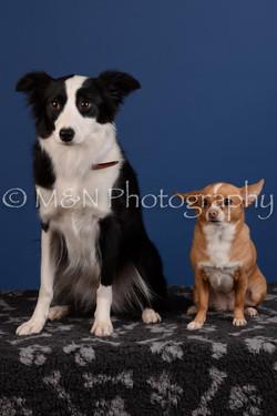 M&N Photography -DSC_5305