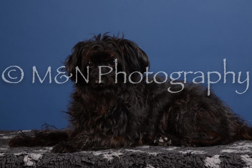M&N Photography -DSC_4998
