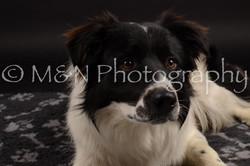 M&N Photography -DSC_9730