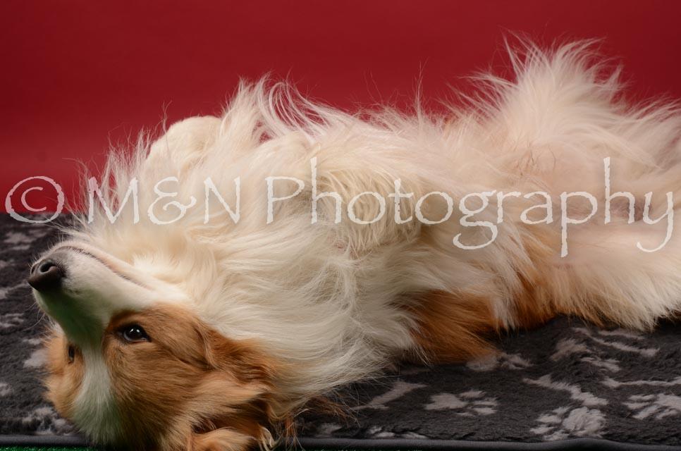 M&N Photography -DSC_6726