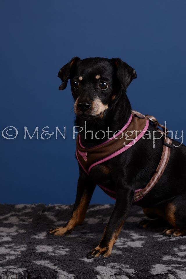 M&N Photography -DSC_5233