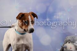 M&N Photography -DSC_6780
