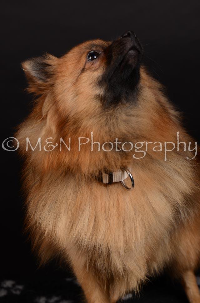 M&N Photography -DSC_5860