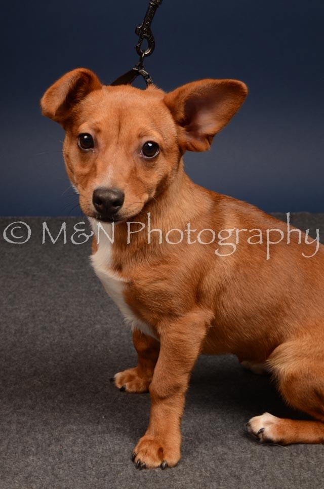 M&N Photography -DSC_4580