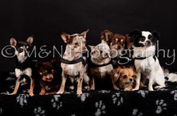 M&N Photography -DSC_5553