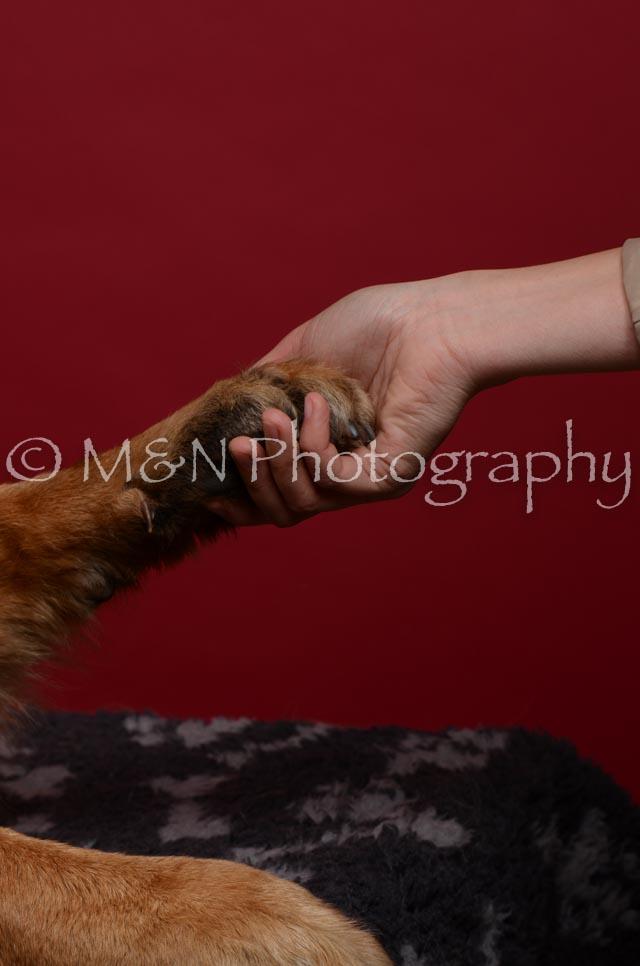 M&N Photography -DSC_3427