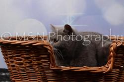 M&N Photography -DSC_6974