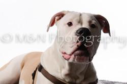 M&N Photography -DSC_8772