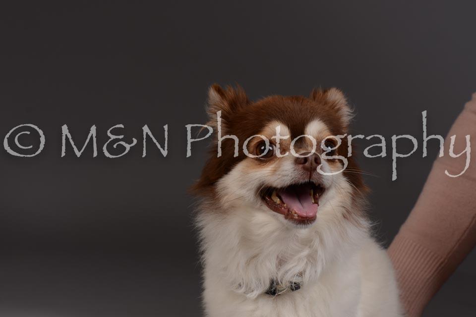 M&N Photography -DSC_2325