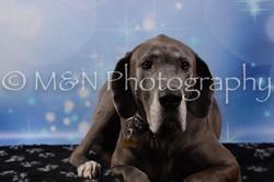 M&N Photography -DSC_6758