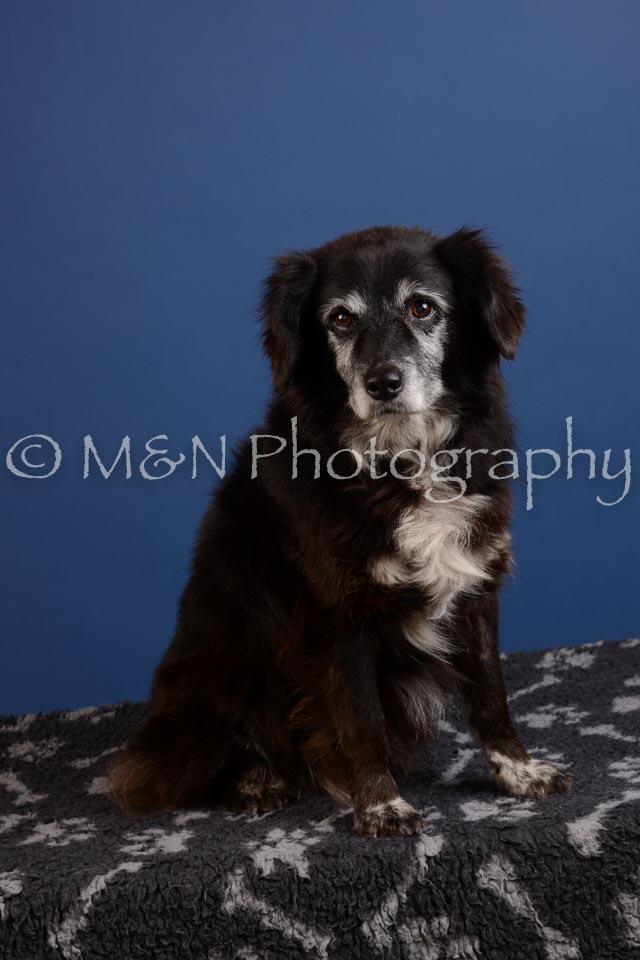 M&N Photography -DSC_4890