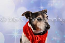 M&N Photography -DSC_6641