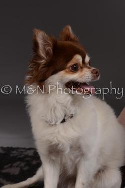 M&N Photography -DSC_2326
