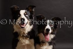 M&N Photography -DSC_9959