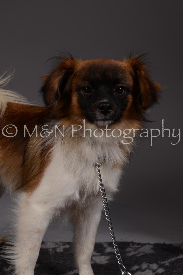 M&N Photography -DSC_2298