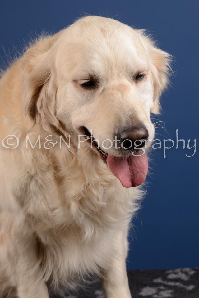M&N Photography -DSC_5164