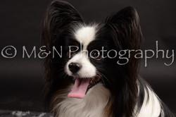 M&N Photography -DSC_9819