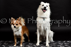 M&N Photography -DSC_2386