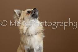 M&N Photography -_SNB0474