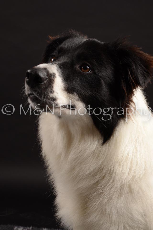 M&N Photography -DSC_9721