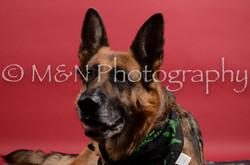 M&N Photography -DSC_8596