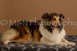 M&N Photography -_SNB0734
