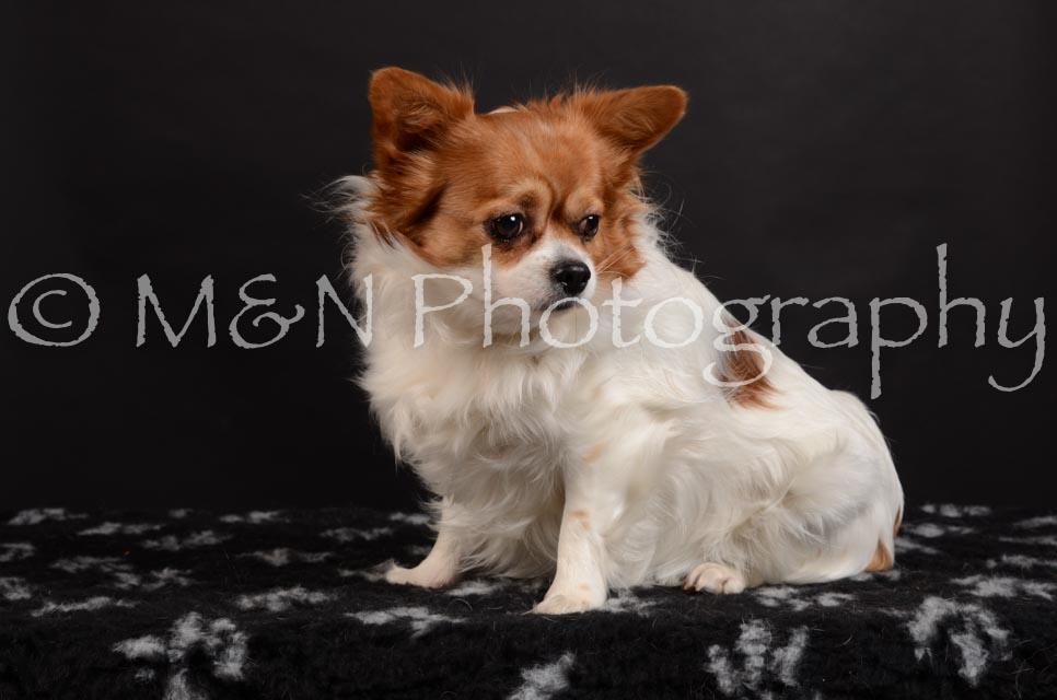 M&N Photography -DSC_5969