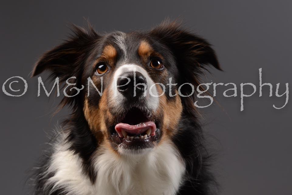 M&N Photography -DSC_2065