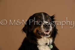 M&N Photography -_SNB0857