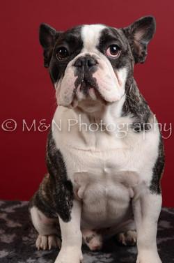 M&N Photography -DSC_3676