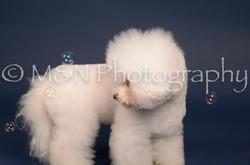 M&N Photography -DSC_3898