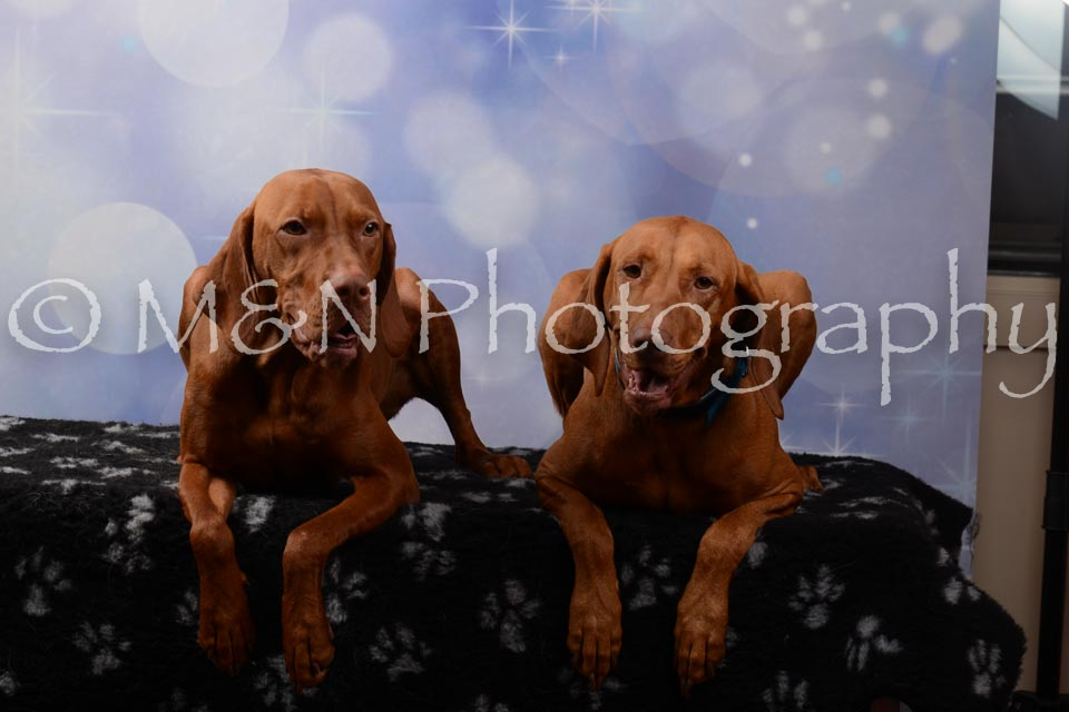 M&N Photography -DSC_7044