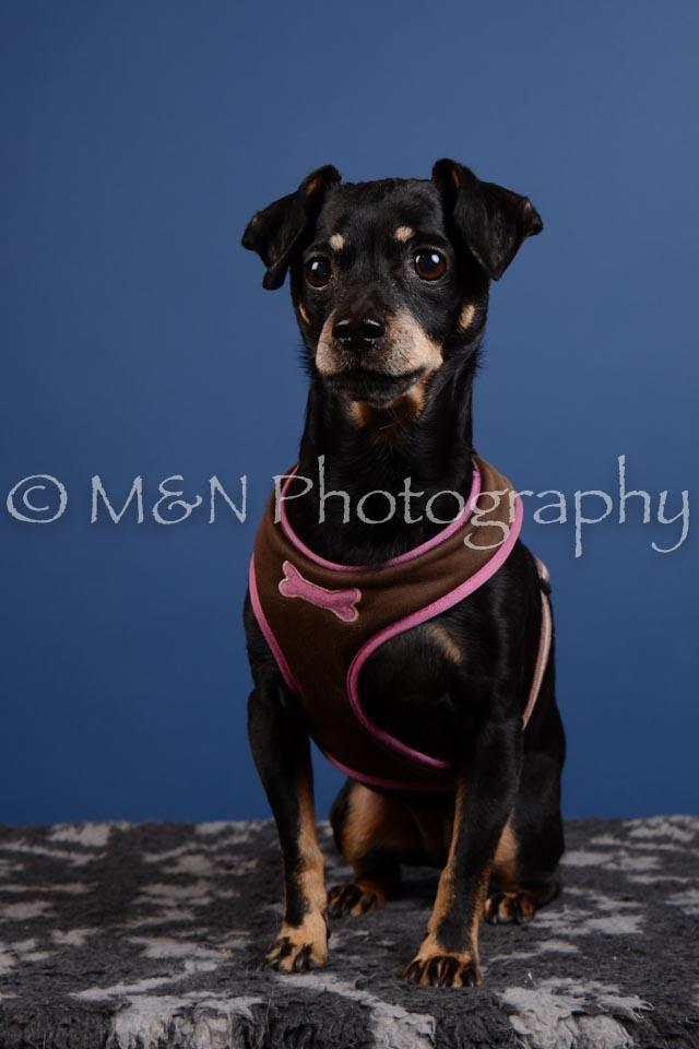 M&N Photography -DSC_5238