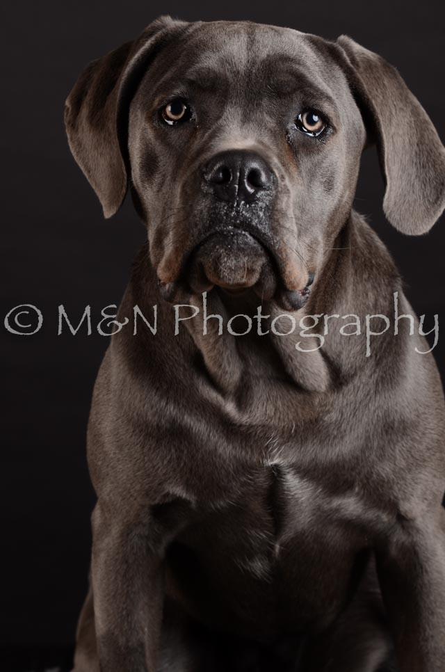 M&N Photography -DSC_5583