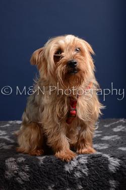 M&N Photography -DSC_3880