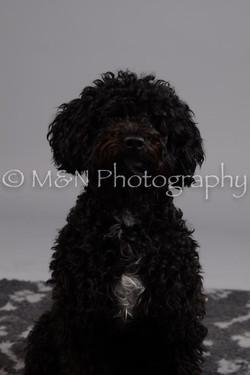 M&N Photography -DSC_2636