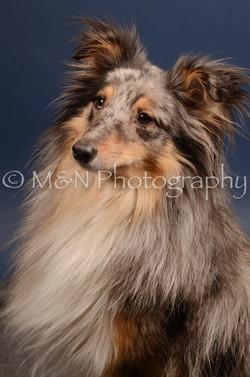 M&N Photography -DSC_4450