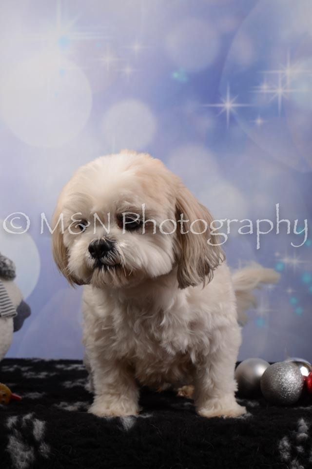 M&N Photography -DSC_6492