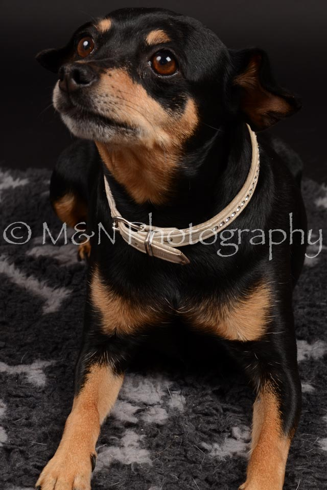 M&N Photography -DSC_9659